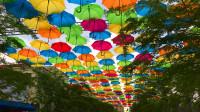 О зонтах